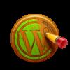 Custom WordPress Designs