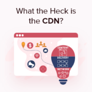 Why Do You Need a CDN for Your WordPress Blog? [Infographic]