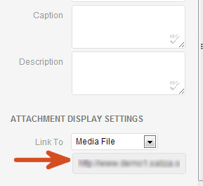 Copy File Location in Media Uploader