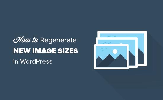 Comment régénérer les miniatures et les nouvelles tailles d'image dans WordPress