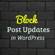 How to Block WordPress Post Updates and Deletion After a Set Period