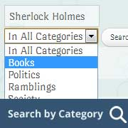 How to Search By Category in WordPress