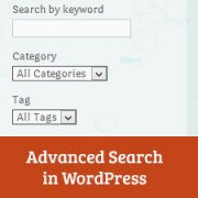 How to Add an Advanced Search Box in WordPress using Facetious