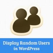 How to Randomly Display Registered Users in WordPress