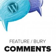 How to Feature/Bury Comments in WordPress with Featured Comments