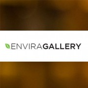 How to Easily Create Responsive WordPress Image Galleries with Envira