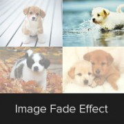 How to Fade Images on Mouseover in WordPress