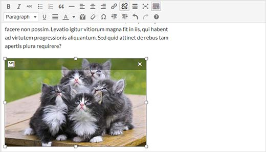 Resize and edit an image right inside the post editor