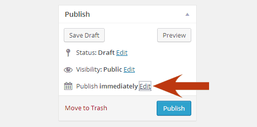 Hidden timestamp in WordPress