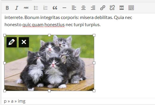 Resize images inside post editor