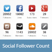 How to Display Social Media Followers Count as Text in WordPress