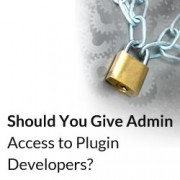 Should You Give Admin Access to Plugin Developers for Fixing Bugs?