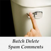 How to Quickly Batch Delete Spam Comments in WordPres