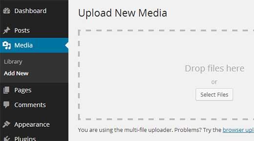 Upload social media icons to WordPress Media Library
