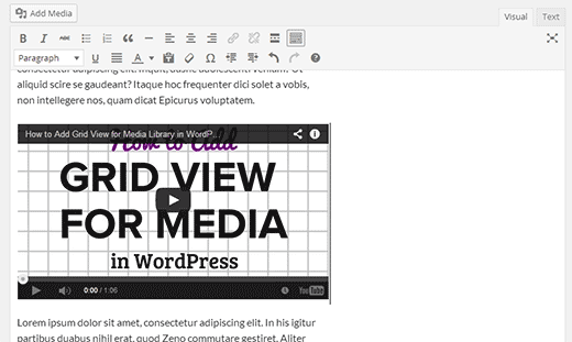 Embeds will be displayed inside post editor