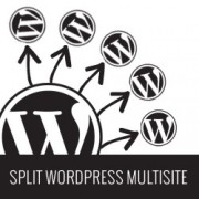How to Move a Site from WordPress Multisite to Single Install