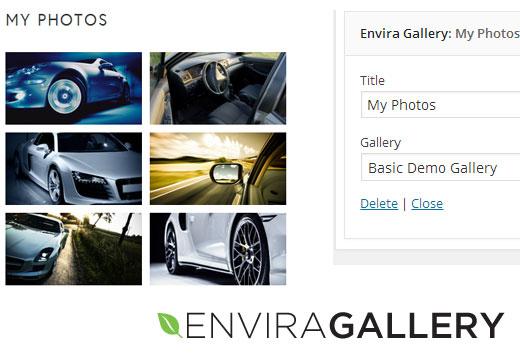 Envira Gallery Widget