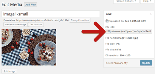 Copying the image file URL in WordPress