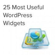 25 Most Useful WordPress Widgets