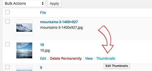 Editing thumbnails for old images in WordPress media library
