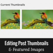 How to Crop and Edit WordPress Post Thumbnails