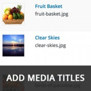 How to Automatically Add Media Titles in WordPress