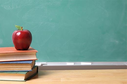 School or college websites using WordPress