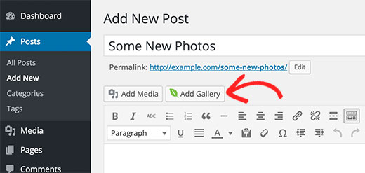 Envira Gallery button in post editor