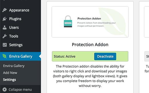 WordPress的Envira Gallery插件中的图像盗窃保护插件