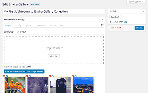 Publish Envira Gallery to add it into posts or pages