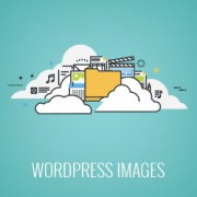 Where Does WordPress Store Images on Your Site?