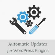 How to Enable Automatic Updates for WordPress Plugins