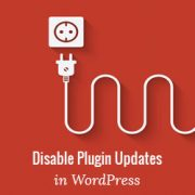 How to Disable Plugin Updates in WordPress and Why You Shouldn't