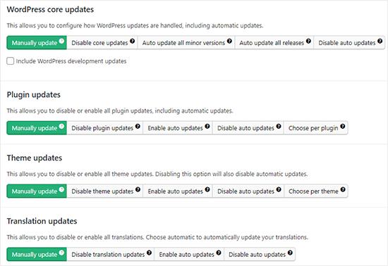 Managing auto updates in WordPress