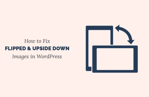 Fix flipped and upside down images in WordPress