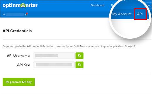 OptinMonster API keys
