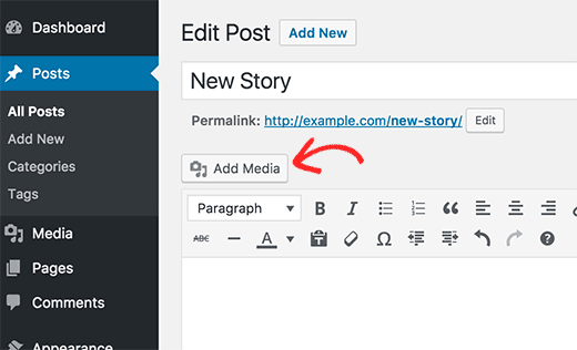 Add image in a WordPress post or page