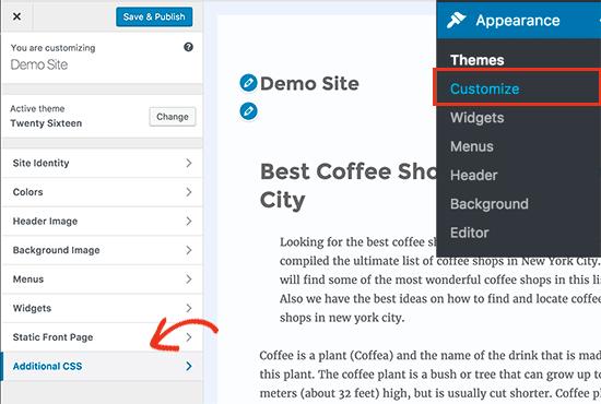 Adding custom CSS in WordPress