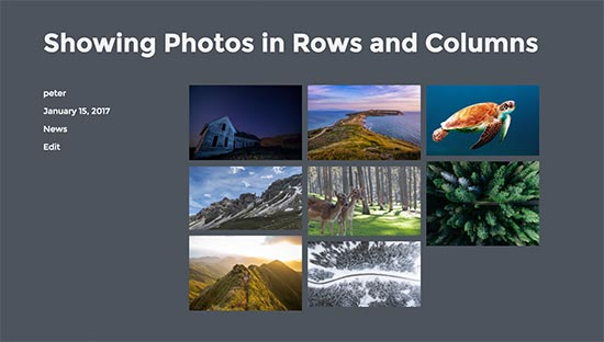 photos in columns and rows