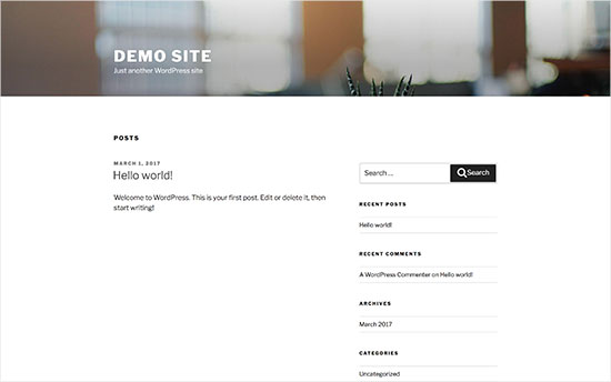 Default WordPress theme