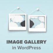 How to Create an Image Gallery in WordPress (Step by Step)