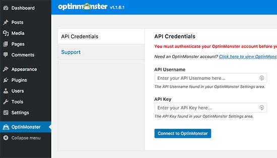 Enter OptinMonster API Keys