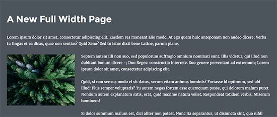 Full width page preview