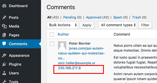 IP addresses stored in WordPress comments