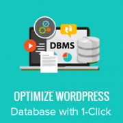 How to Optimize Your WordPress Database with One Click