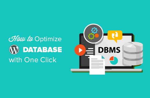 How to optimize WordPress database