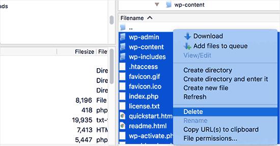 Delete old WordPress files