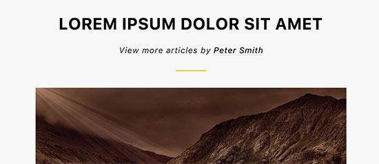 Showing author link in WordPress posts