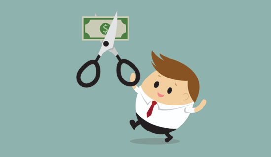 Controlling cost of your custom WordPress theme project