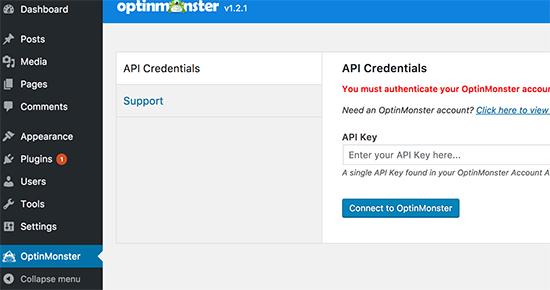 Add your OptinMonster API Key